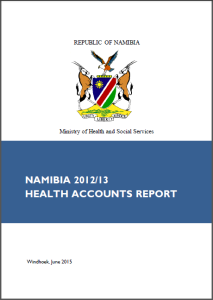 Namibia HA report screenshot
